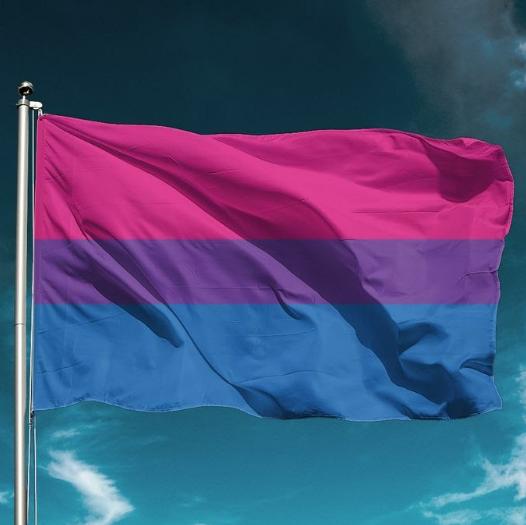 Bi-Flag